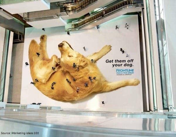 guerrilla campaign dog fleas